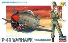 EGG PLANE P-40 WARHAWK TH9 (5/21) *